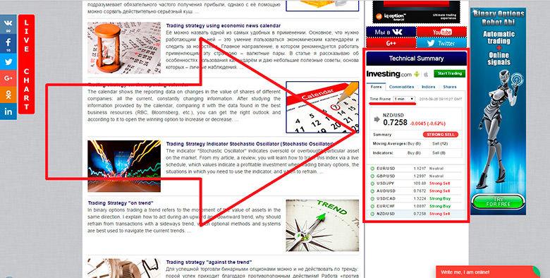 tiek ievietota informācija par ienākumiem internetā