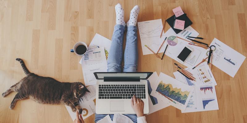 Darbs mājās internetā bez ieguldījumiem: labākie veidi, kā pelnīt naudu