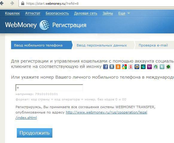 Kā izveidot savu tīmekļa naudu. Tīkla naudas izveide un citas pakalpojuma funkcijas