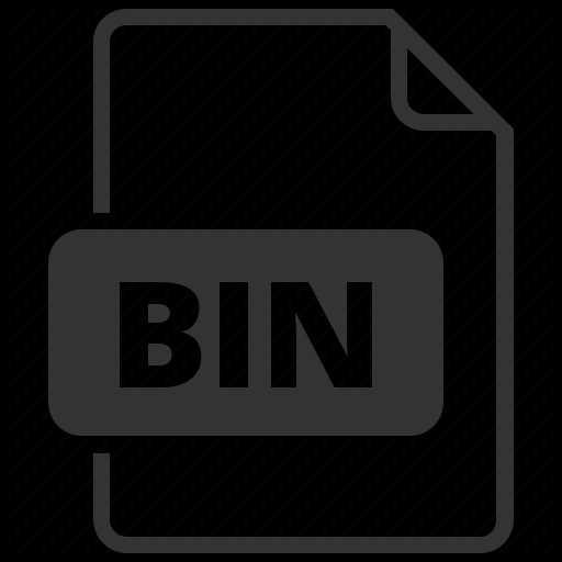 kas ir binārie faili un avoti