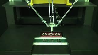 viedoklis par bināro robotu