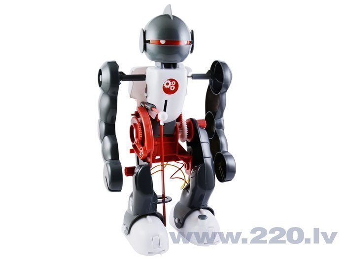 dienas tirdzniecības robots)