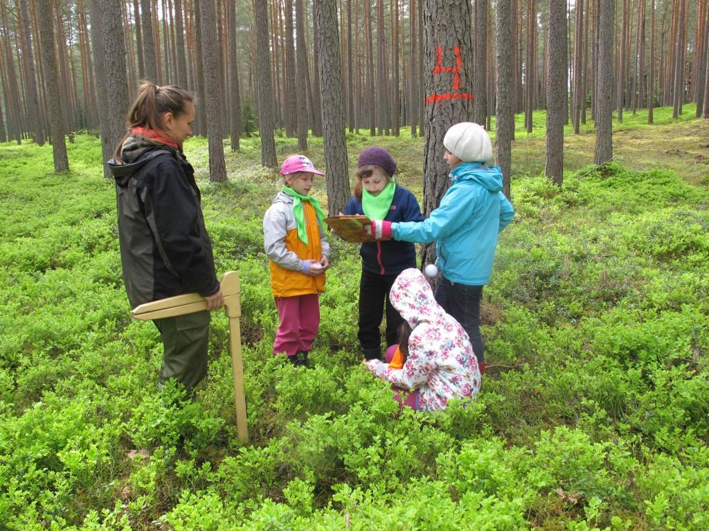 meža izpeļņa internetā