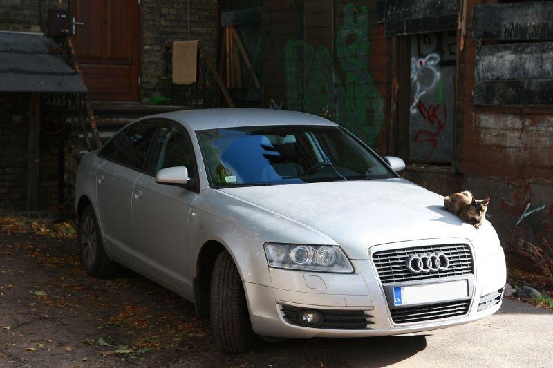 auto ieņēmumi interneta programmās auto ienākumiem