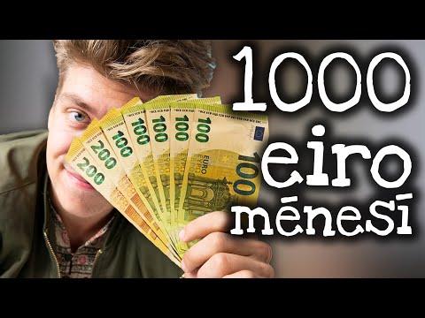 Es pelnu naudu par iespējām