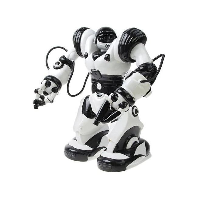 variants robots pārskati)