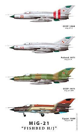 21. variants)