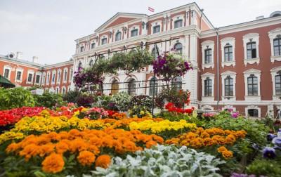 Sākusies tirgotāju pieteikšanās Stādu dienām Jelgavā