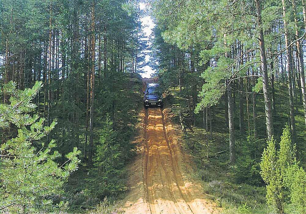 meža izpeļņa internetā ar ieguldījumiem daudz nopelnīt internetā