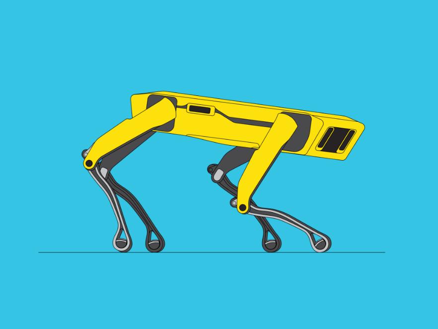 robota variants