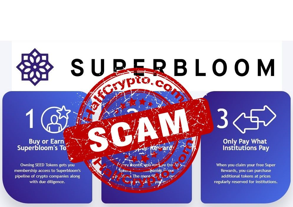 scam token)